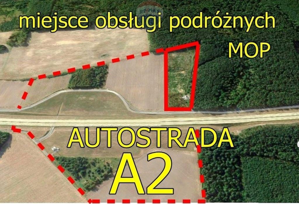 Działka, Lubrza, Lubrza (gm.), 29812 m²