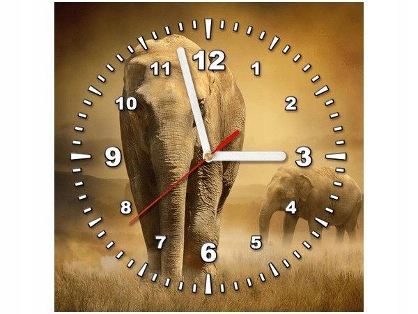 30x30cm Zegar Wędrujące słonie obraz podobrazie dr