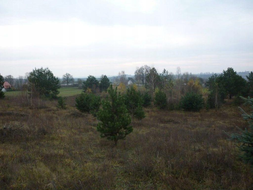 Działka, Zastawie, Zbiczno (gm.), 3033 m²