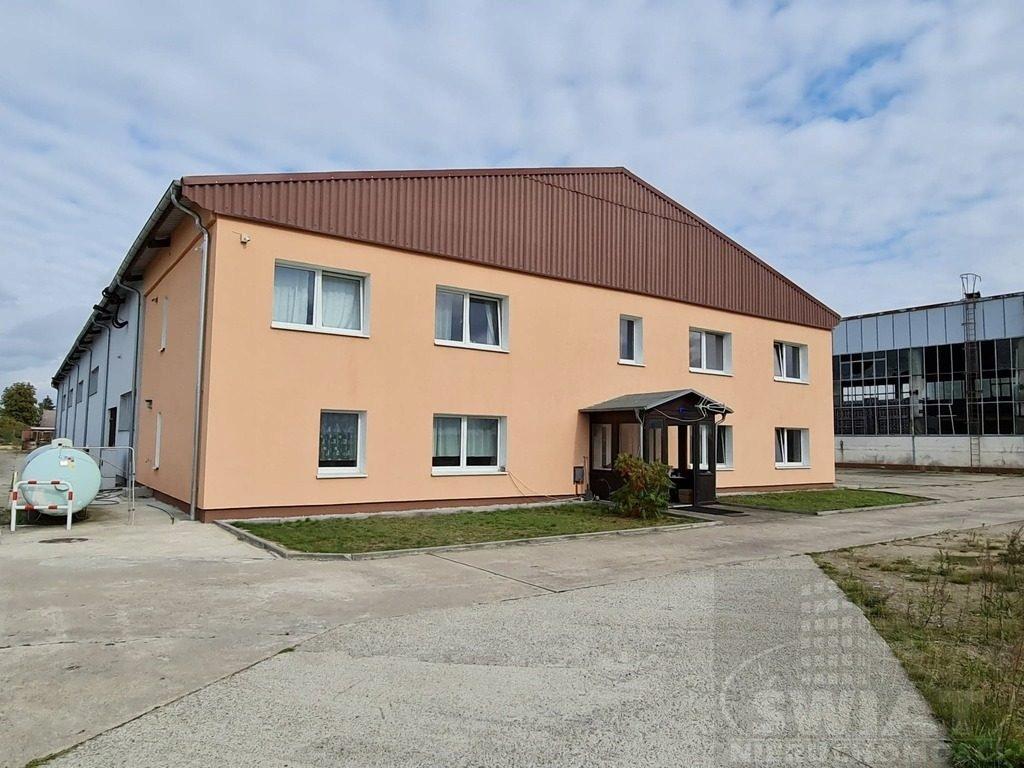 Magazyny i hale, Wąwelnica, 1000 m²