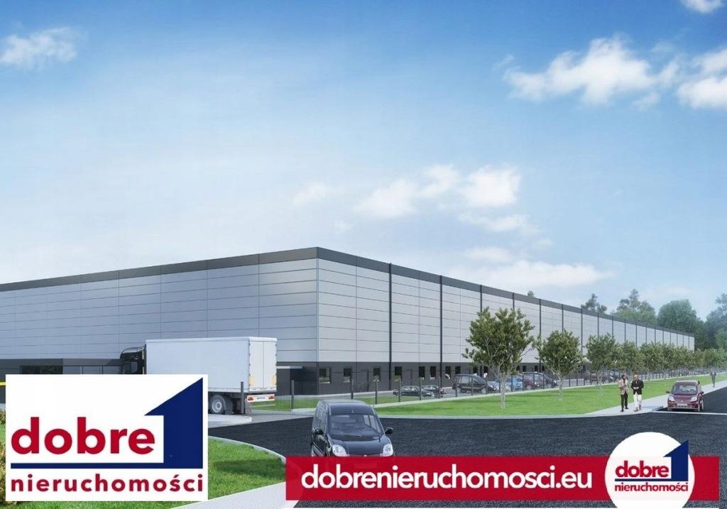 Komercyjne, Bydgoszcz, Kapuściska, 613 m²