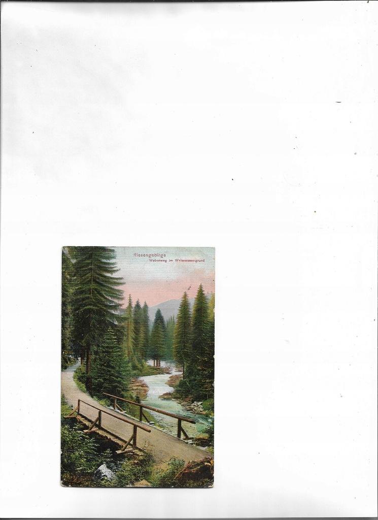 Weberweg im Weisswassergrund Riesengebrige 1910