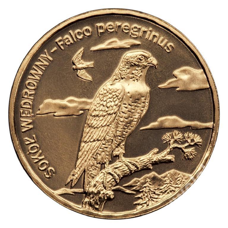 Zwierzęta świata Sokół wędrowny moneta