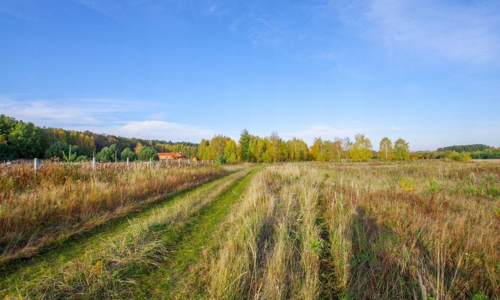 Działka, Sadków, Dobroszyce (gm.), 600000 m²