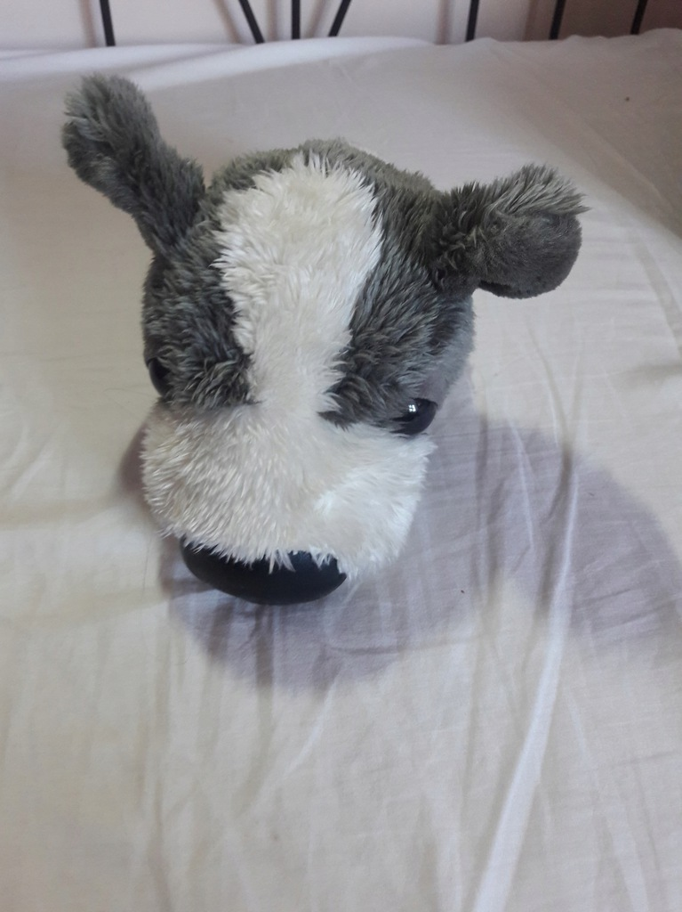 Pieski the dog oryginalne