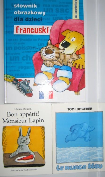 Francuski obrazkowy słownik i książeczki jak nowe
