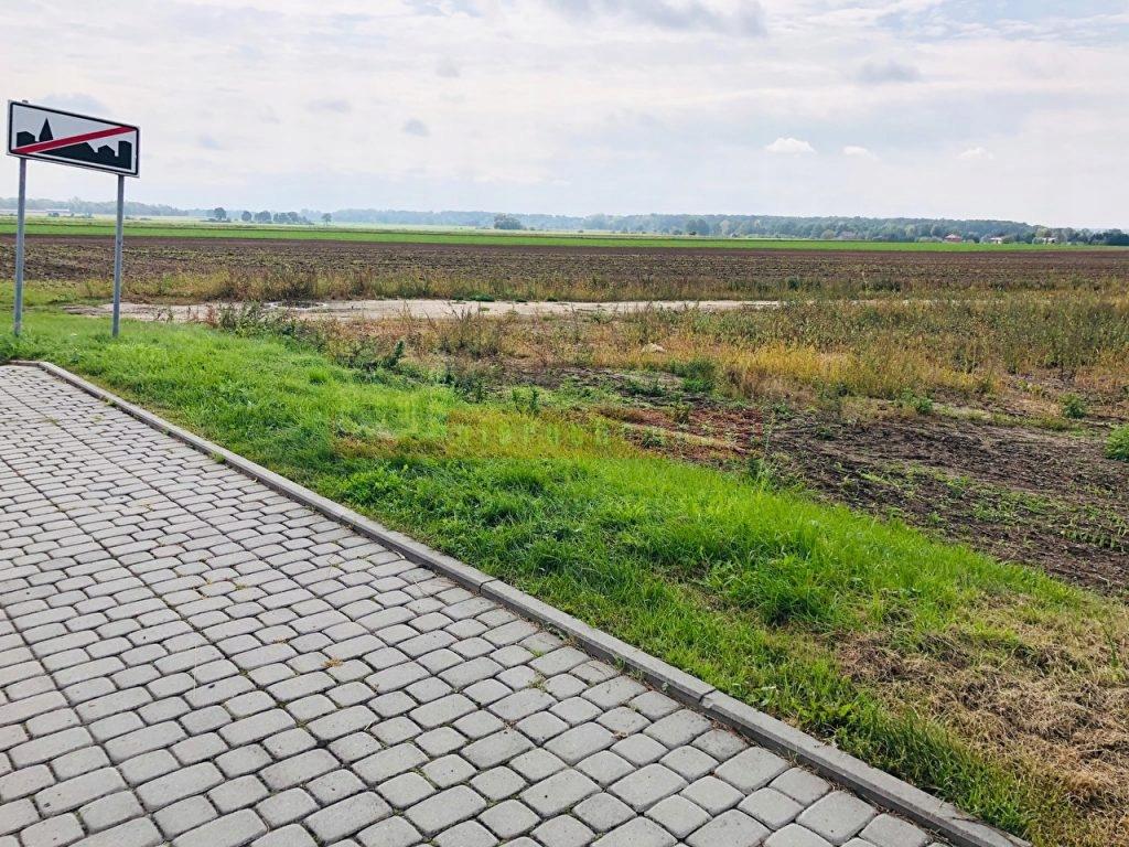 Działka, Krapkowice, Krapkowice (gm.), 7498 m²