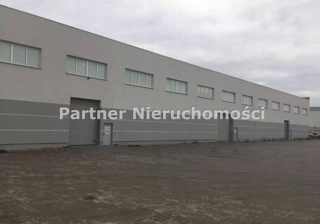 Komercyjne, Toruń, 1100 m²