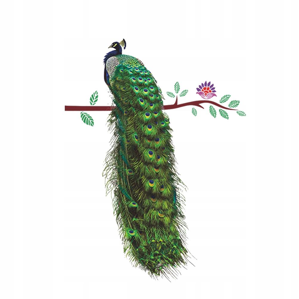 Paw On Branch Pióra Naklejki ścienne 3D Żywy nakle