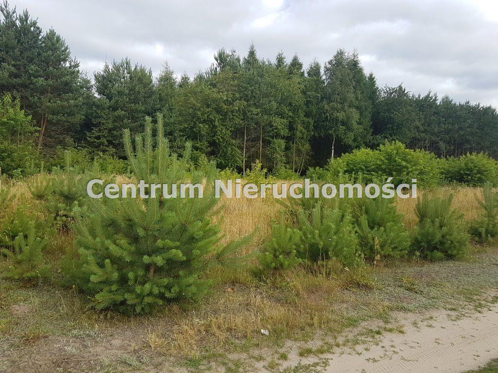 Działka, Paprotnia, Zapolice (gm.), 900 m²