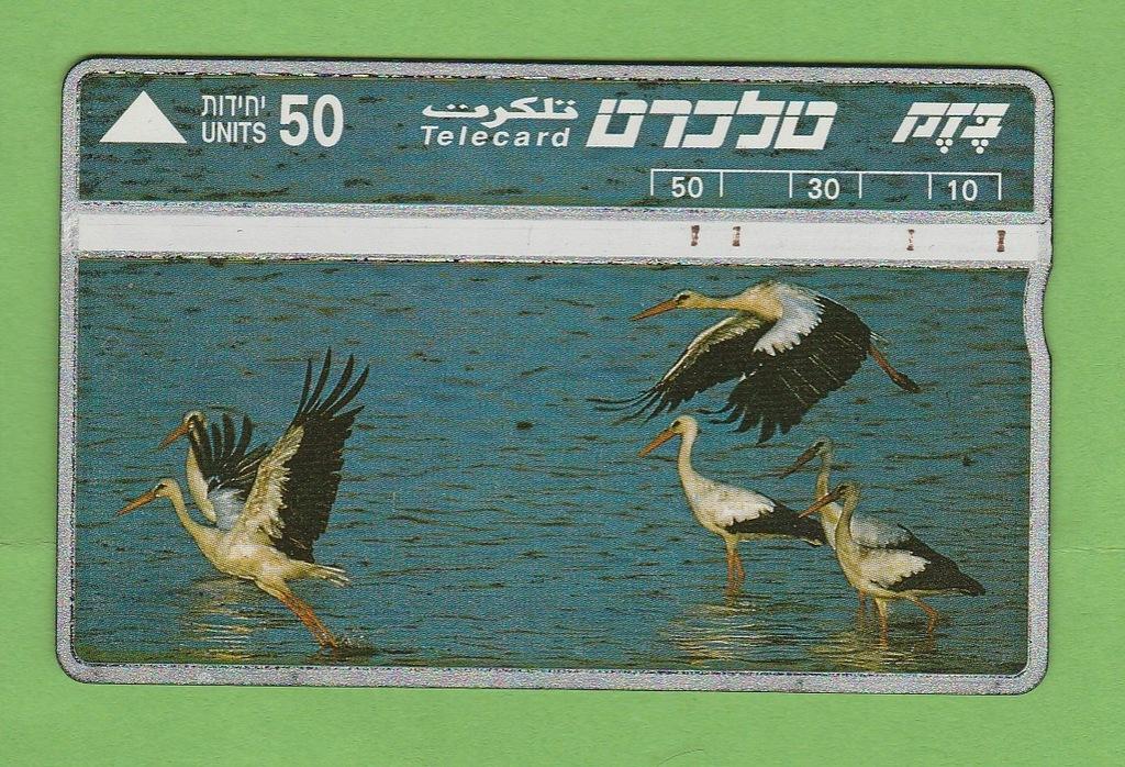 IZRAEL fauna ptaki bociany / seria 422C