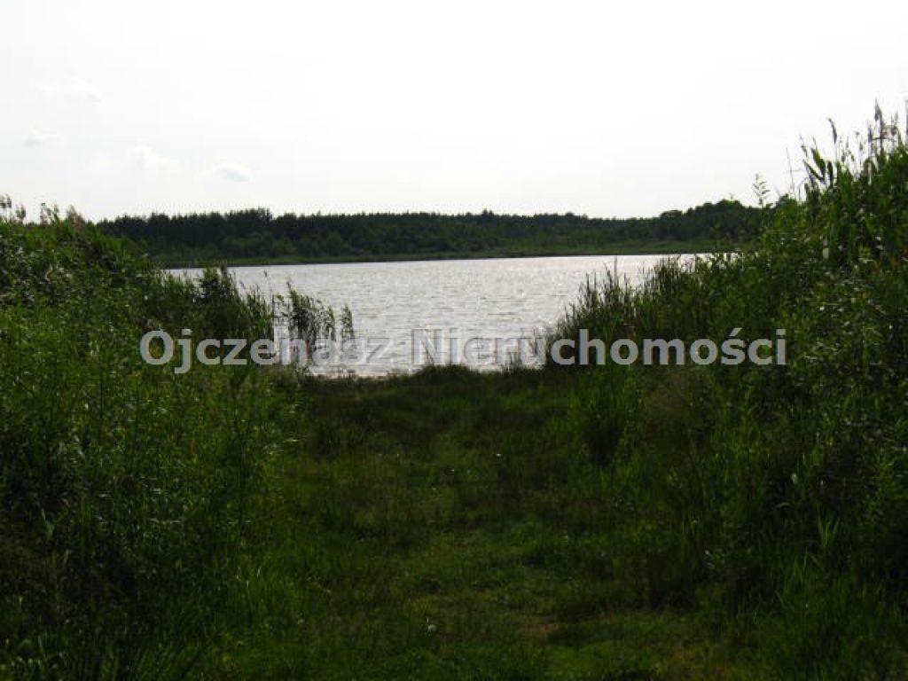 Działka, Ostrowite, Lipno (gm.), 5000 m²