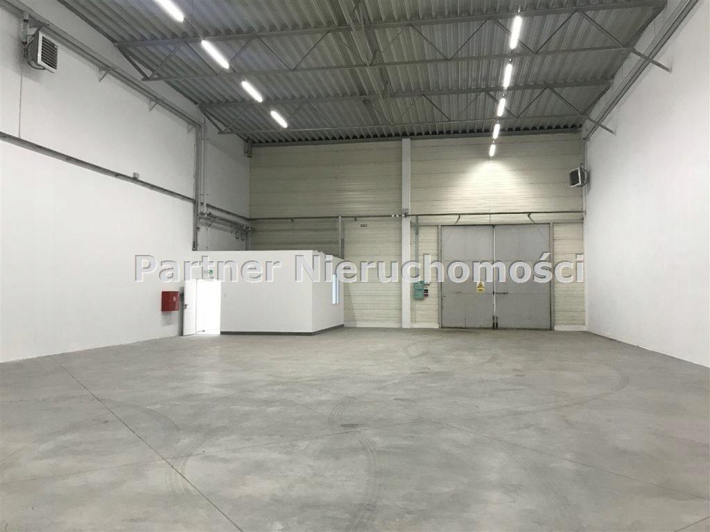 Komercyjne, Toruń, 215 m²