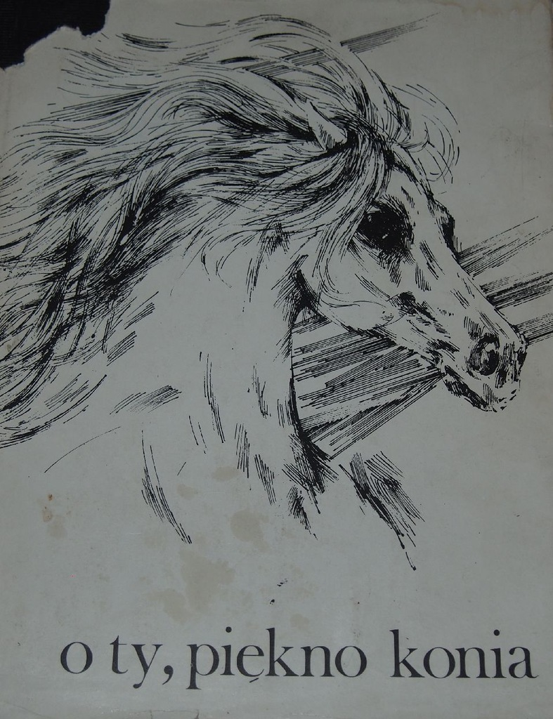 O Ty Piękno Konia Wiersze I Grafiki
