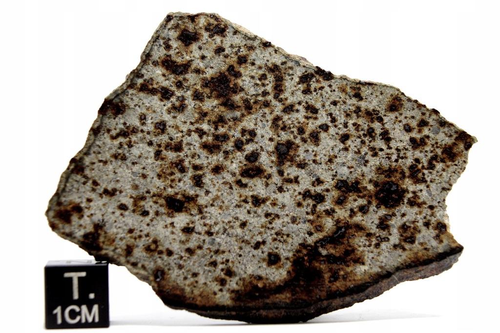 Meteoryt 7650, chondryt, 33,34 g, płytka
