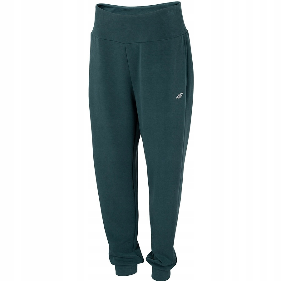 4F (L) Spodnie Damskie