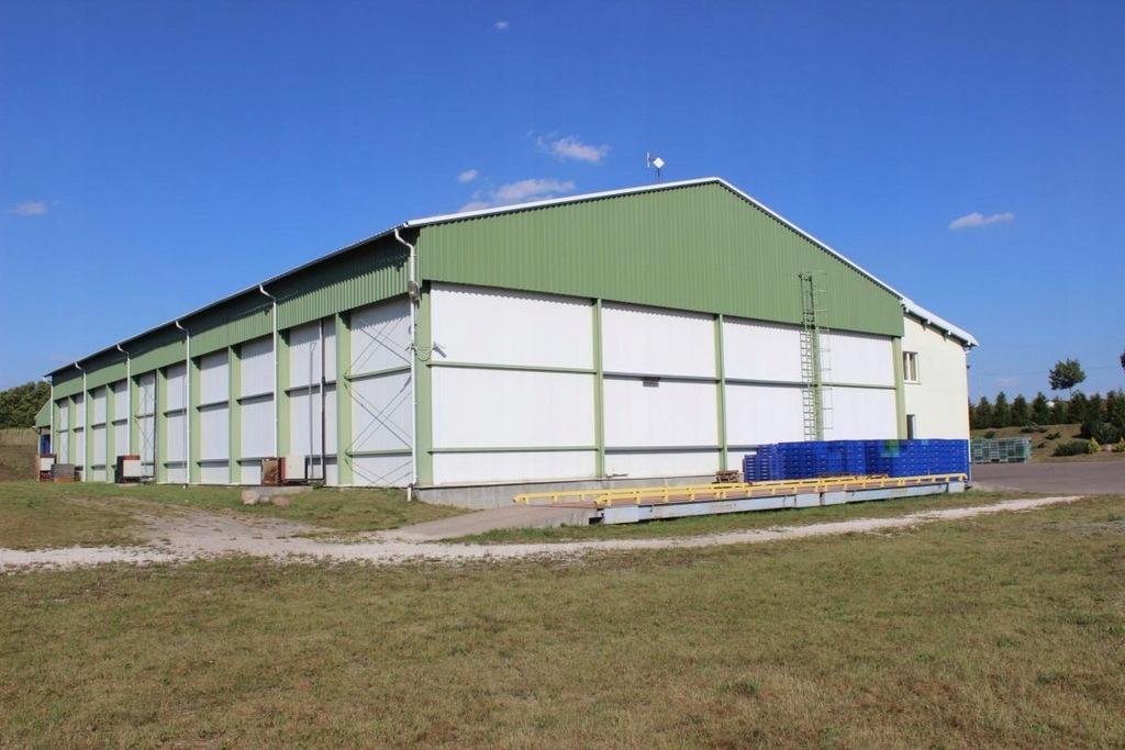 Komercyjne, Górzno-Wybudowanie, 1208 m²