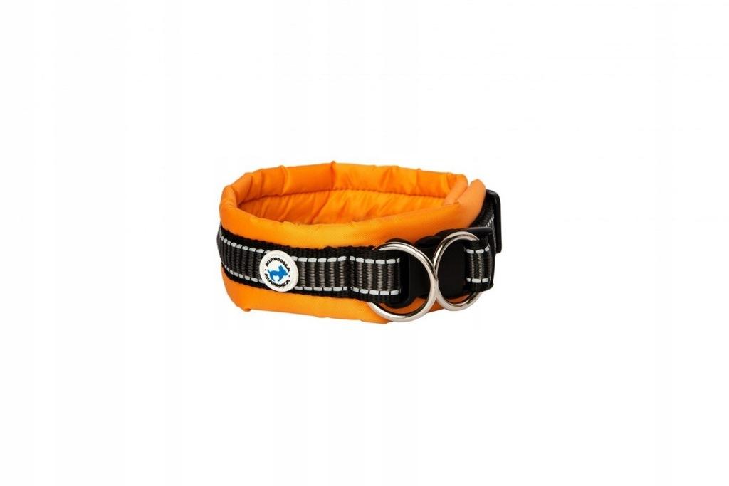 Obroża Pies ALL FOR DOGS Klasyczna Pomarańczowa L