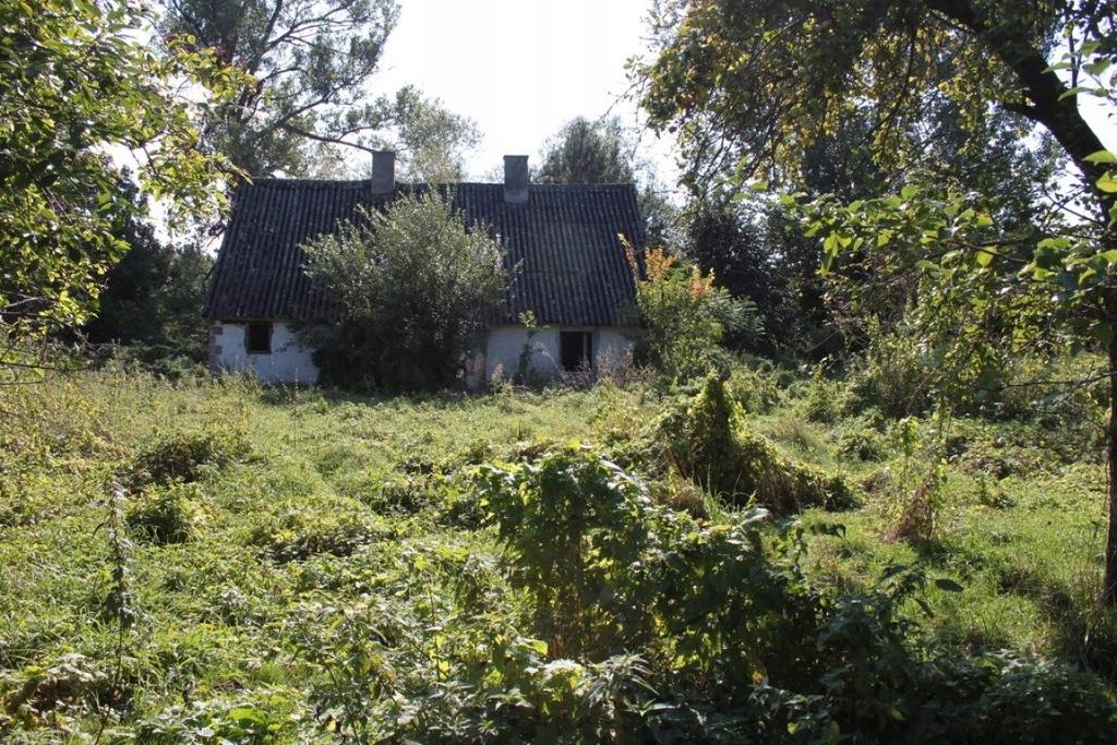 Działka Krzeszyce, sulęciński, 3431,00 m²