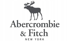 Abercrombie Fitch HOODIE bluza Hollister - S