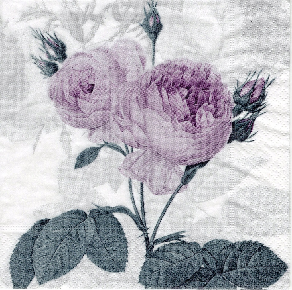 SERW1-118 róże vintage retro serwetka Decoupage