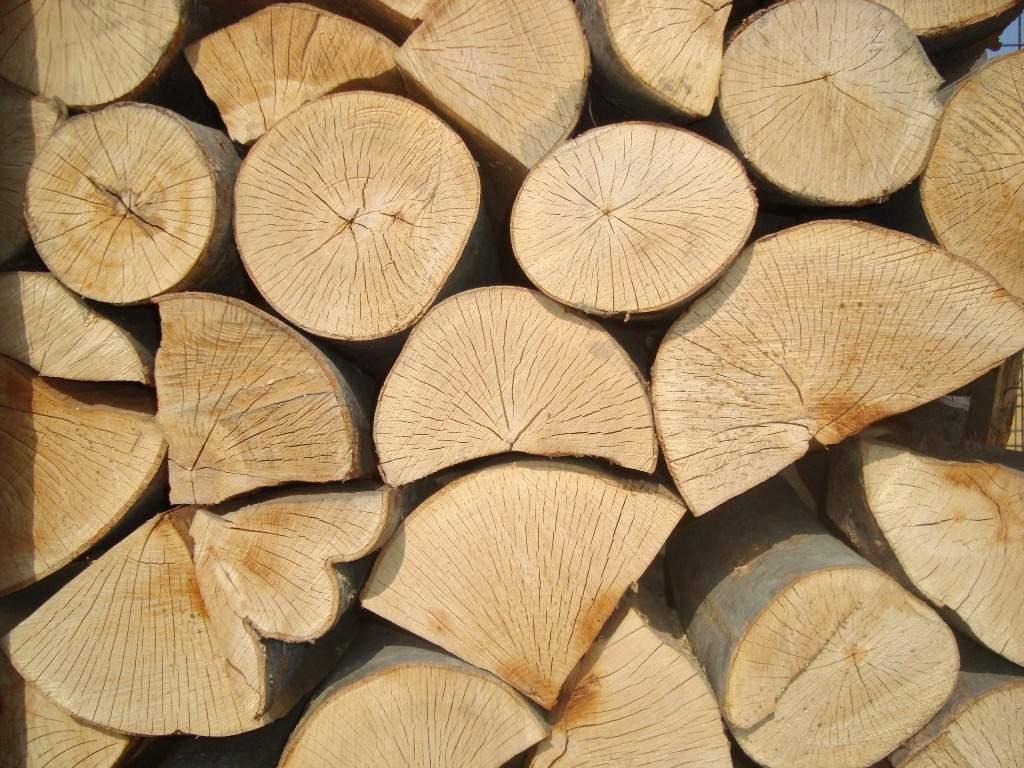 Sezonowane drewno kominkowe, drzewo do kominka