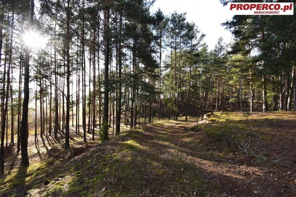Działka, Pągowiec, Raków (gm.), 8620 m²
