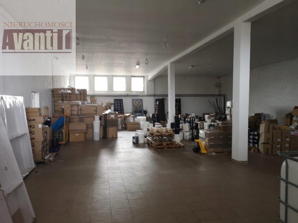 Magazyny i hale, Police, Police (gm.), 600 m²