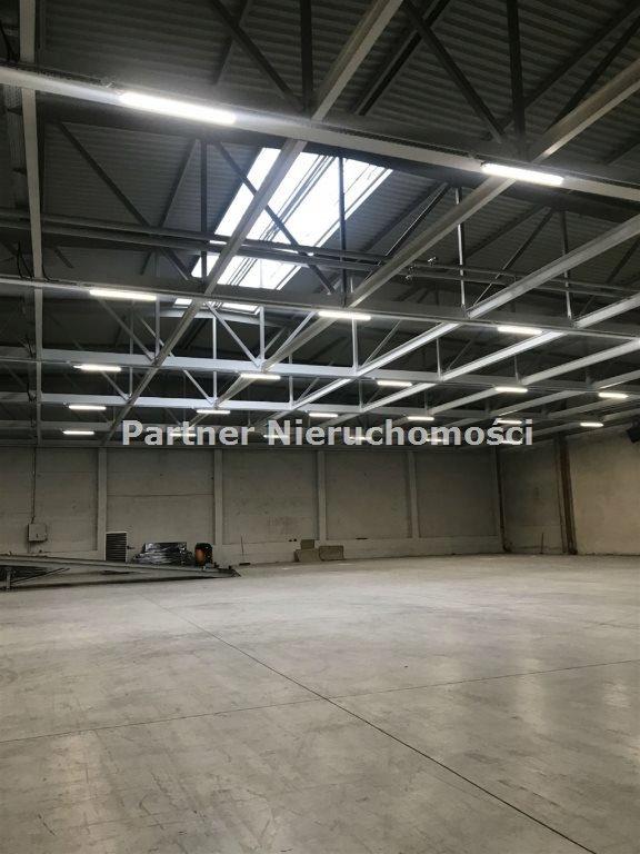 Komercyjne, Toruń, 3100 m²