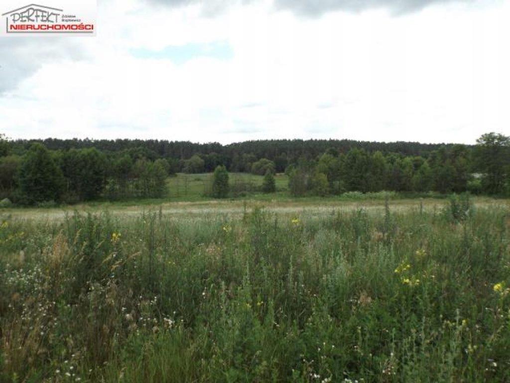 Działka, Nowy Dwór, Brodnica (gm.), 41900 m²