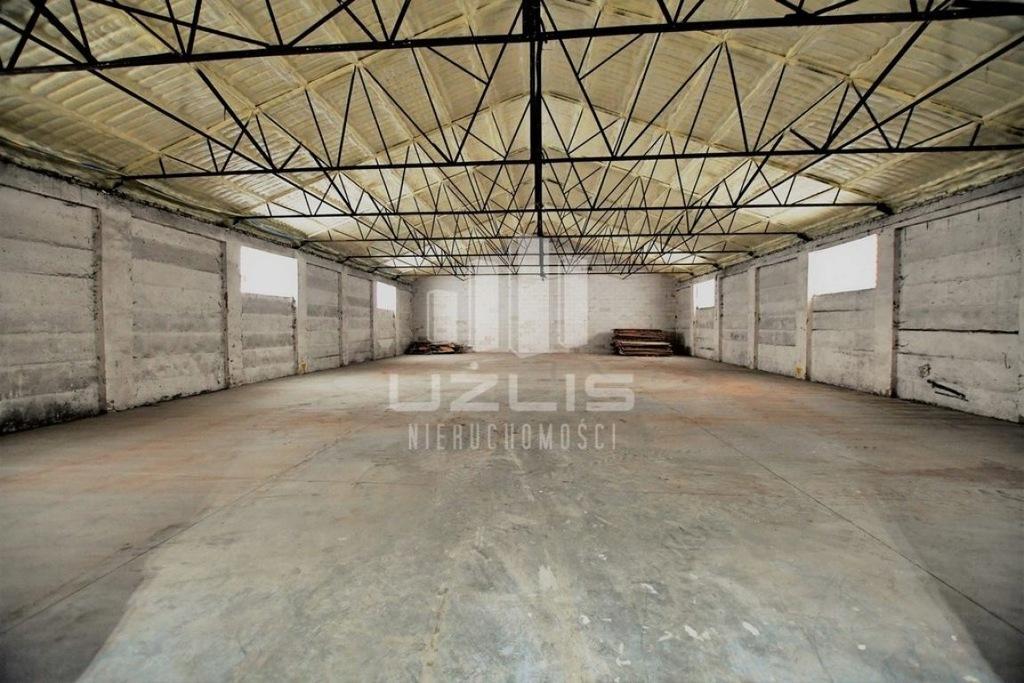 Komercyjne, Rajkowy, Pelplin (gm.), 3581 m²