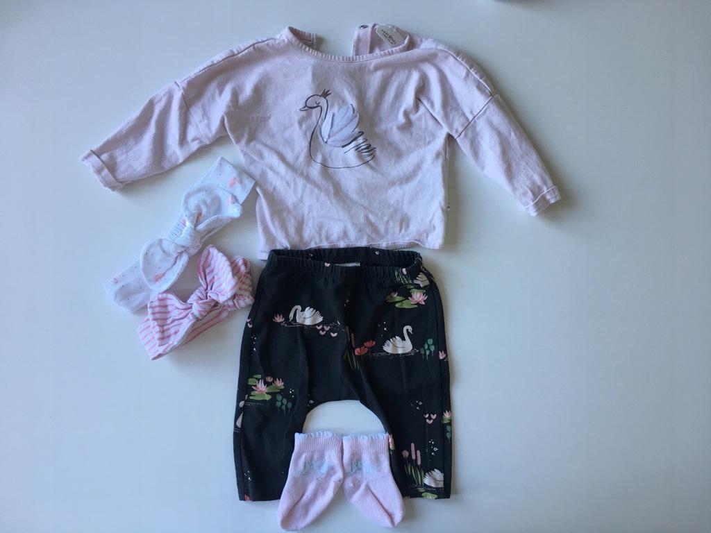 next komplet bluzka spodnie łąbędzie r. 62