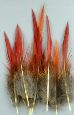 10 sztuk piękne naturalne pióra czerwone 8 - 12 cm