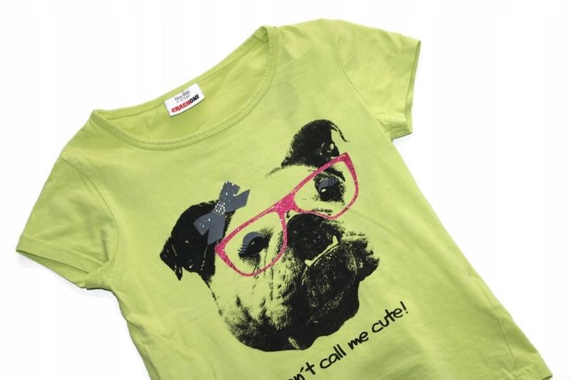 y502 Żółta bluzka t-shirt buldog 134-140