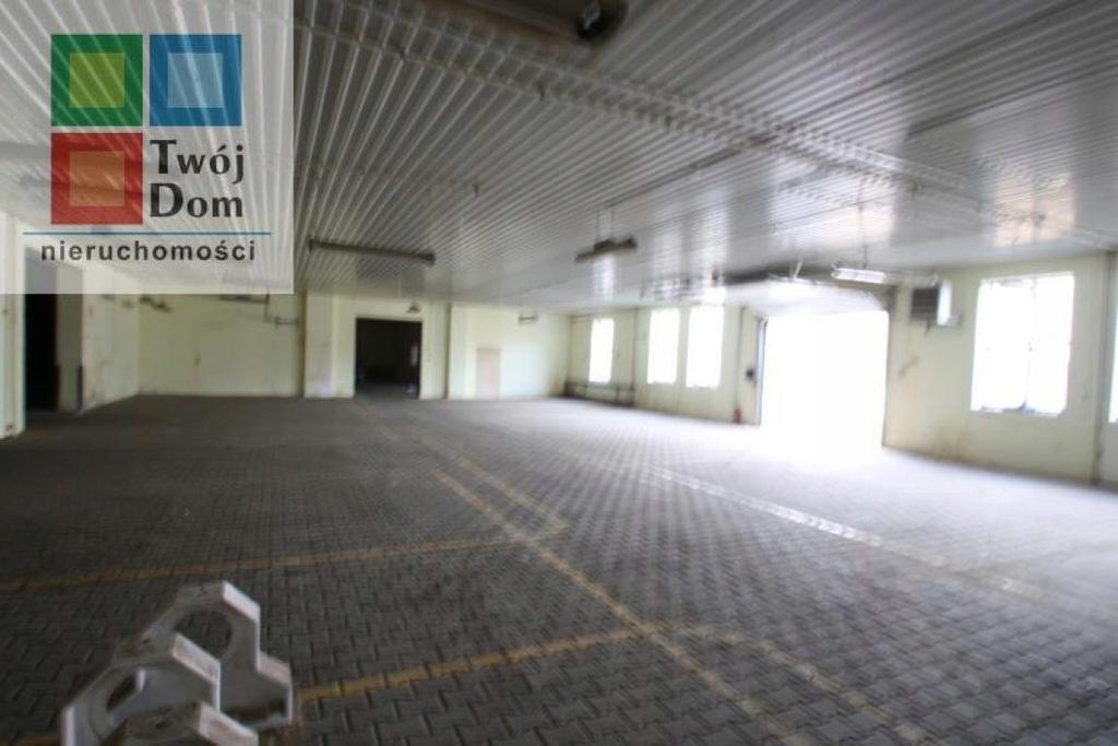 Biuro, Koszalin, 1117 m²