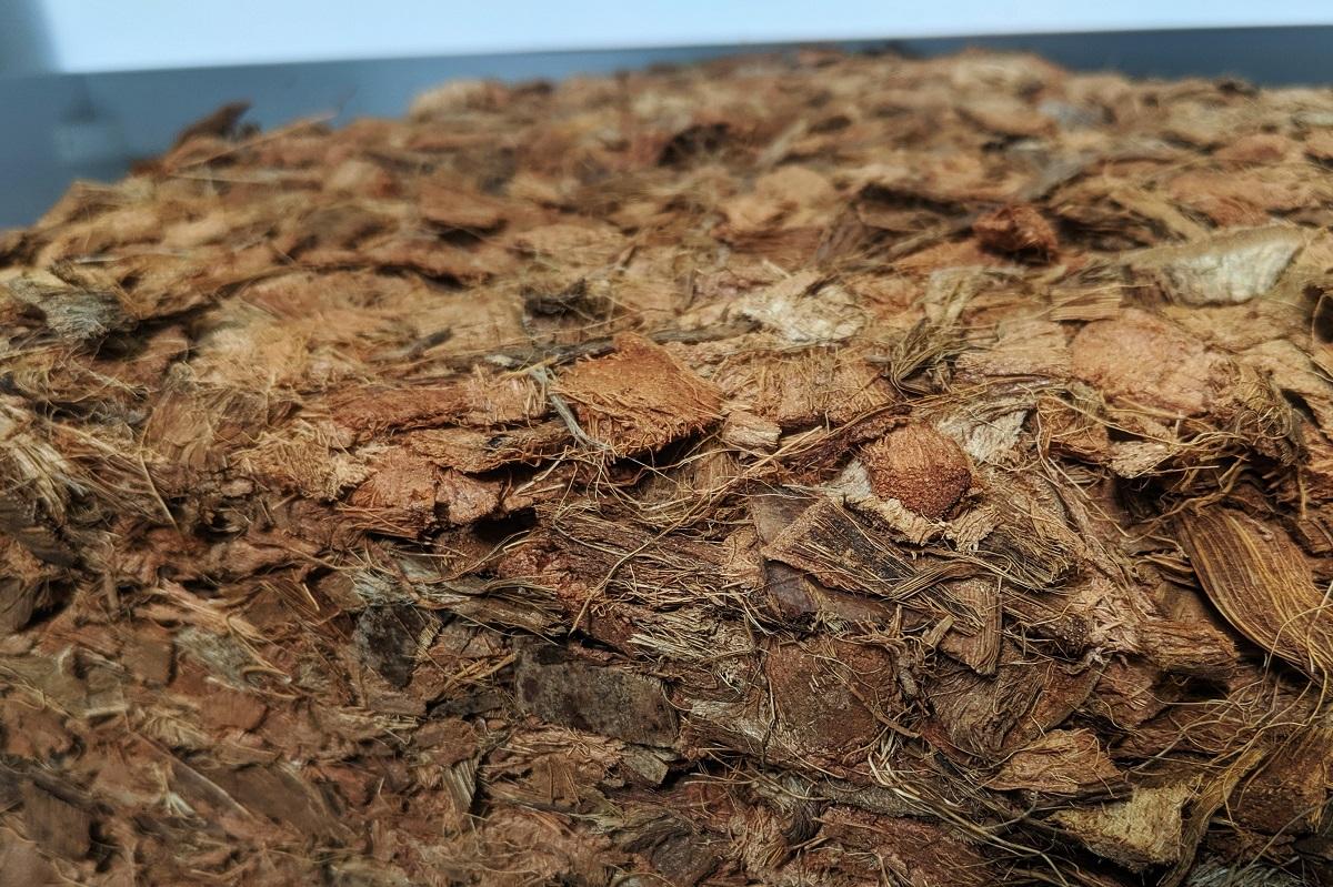 Struktura włókna kokosowego.