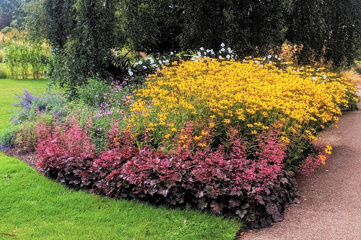 Ogrod Jakie Kwiaty Wieloletnie Sadzic W Ogrodzie