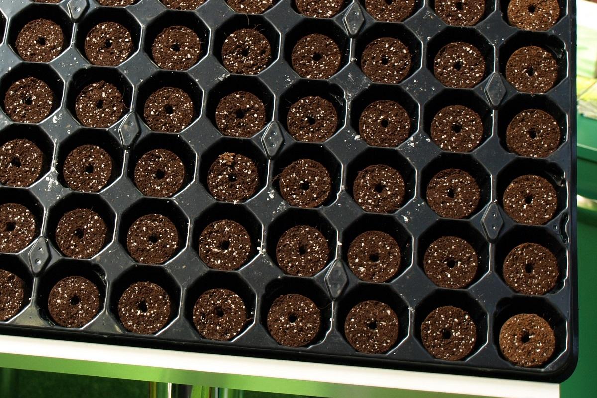 Tacki z gotowym podłożem i otworem na nasiona lub do rozmnażania roślin.