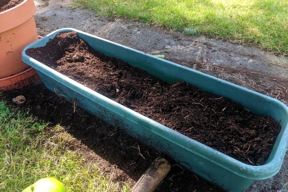 Przygotowanie ziemi do wysiewu nasion metodą domową.