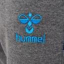Spodnie dresowe męskie Hummel HMLASBORN r S Kolor szary, srebrny