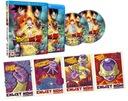 . Dragon Ball Z Resurrection F LIMITED 2 x Blu-ray