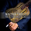 WALTER TROUT-The Blues Came Callin 2LP доставка товаров из Польши и Allegro на русском
