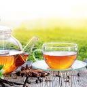 Zielona Herbata Lipton Green Tea Citrus 100 kopert Forma ekspresowa