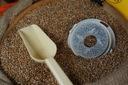 Młynek do mielenia zbóż Mockmill 200PRO 600W 12kg Moc 600 W