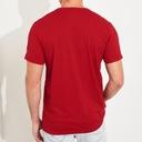 HOLLISTER by Abercrombie T-Shirt Koszulka USA M Materiał dominujący bawełna