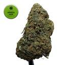 Susz konopny CBD AMNESIA HAZE 2g kwiaty cannabis