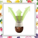Air Wick Botanica Set Elektryk Egzotyczna + 4wkład Cechy dodatkowe automatyczny elektryczny neutralizator zapachów zapas zestaw