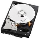 DO PRACY/GIER 12 RDZENI 4,0GHz 8GB 500GB R7 2GB Wn Typ komputera komputer stacjonarny