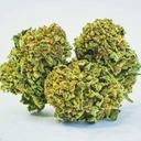 Конопля Суш цветы супер Lemon Haze 1g 12 ,9 % КБР