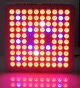 PANEL LAMPA LED DO UPRAWY ROŚLIN 300W PRO BIAŁY Marka ZEED
